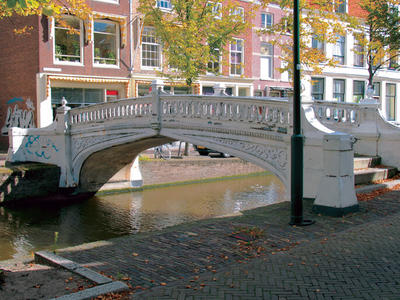 Fish bridge in Delft